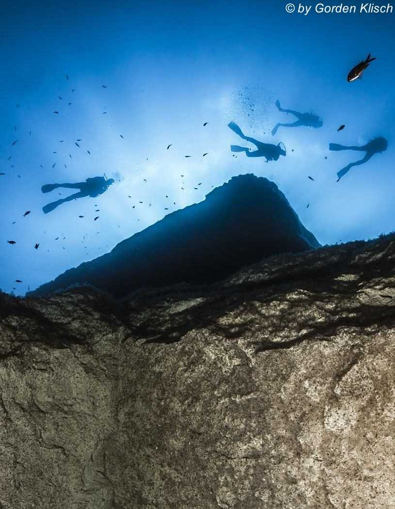 Bottom Up Dive Vision Malta ©Gorden Klisch
