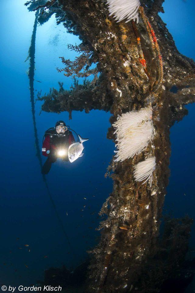 Mast of P29 Boltenhagen Dive Vision Malta ©Gorden Klisch