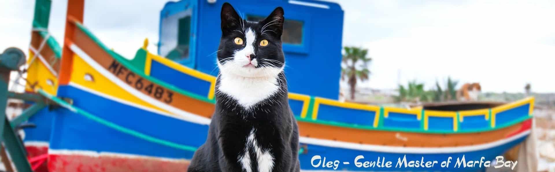 Oleg Scubacats Dive Vision Malta