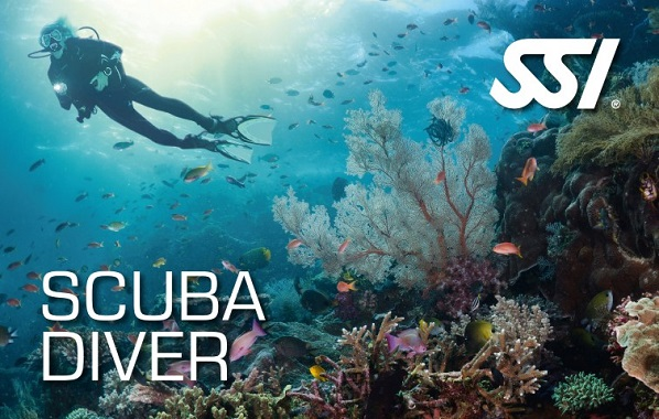 SSI Scuba Diver